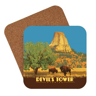 Devil S Tower Wy Coaster Made In The Usa