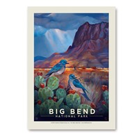 Big Bend Desert Perch Vertical Sticker