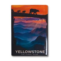 Yellowstone Bear Crossing Metal Magnet