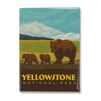 Yellowstone Bear Family Magnet