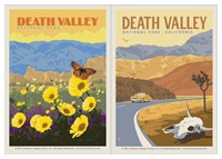 Death Valley Wildflowers & Cow Skull Vinyl Magnet Set